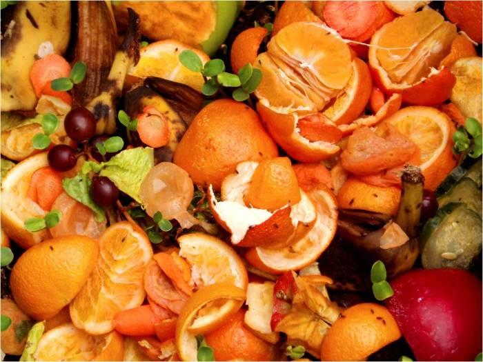 compost_fruit_waste