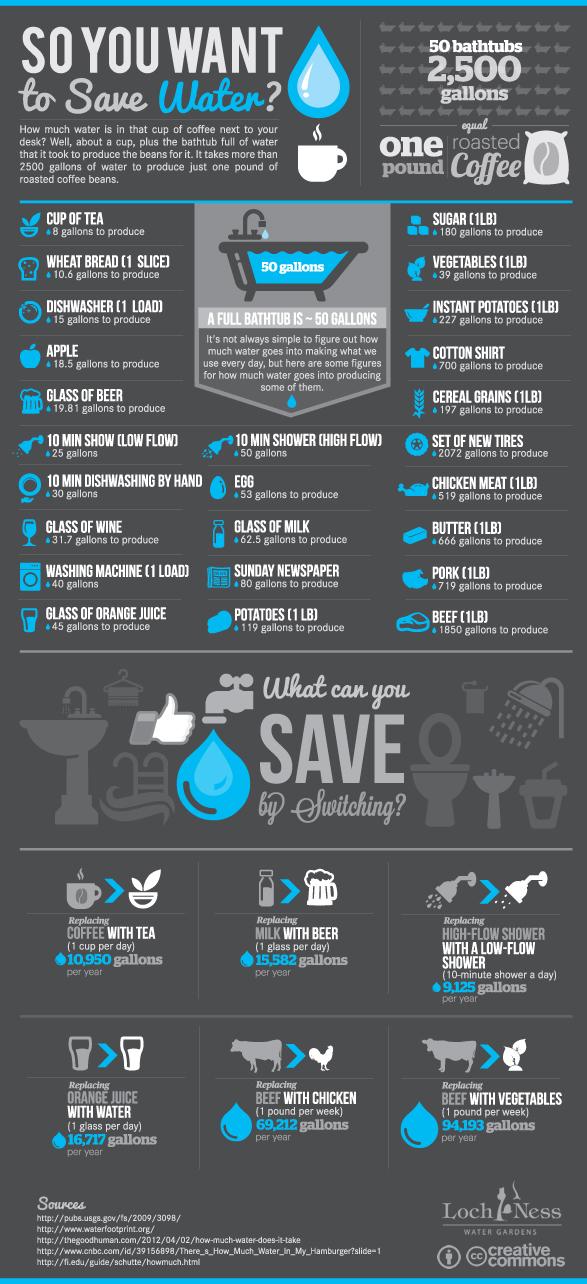 savewater infograph